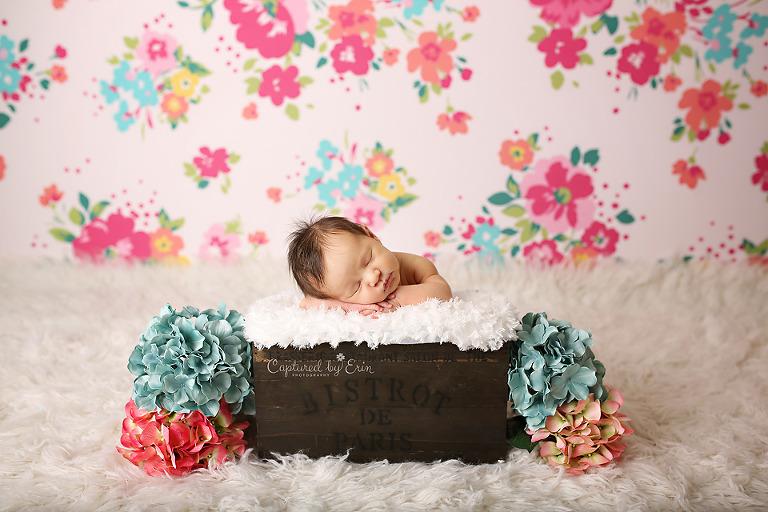 newborn photographer near riverside, ca